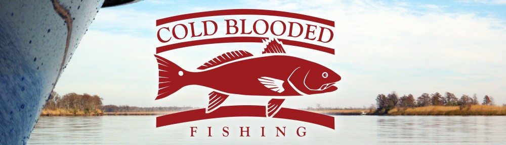 Coldblooded Fishing